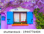 Window And Violet Flowers On...