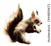 Cute Squirrel Illustration...