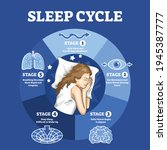 sleep cycle with labeled night... | Shutterstock .eps vector #1945387777