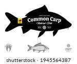vector common carp illustration ... | Shutterstock .eps vector #1945564387