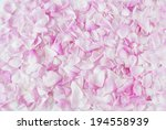 Stock photo pink rose petals background 194558939