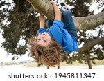 Kids Climbing Trees  Hanging...