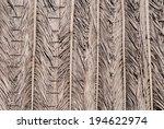 Dry Palm Leaf Background