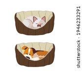 cat sleeping in a basket. dog... | Shutterstock .eps vector #1946233291
