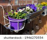 Decorative Flowerpot With...