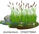 Attractive Pond With Bush Reeds ...