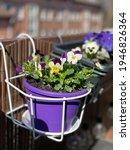 Purple Decorative Flowerpot...