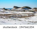 Coastal Dunes With Rail Fence...