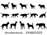 dogs collection silhouettes | Shutterstock .eps vector #194805305