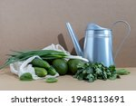 still life of green vegetables...