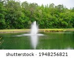 A Pond And Geyser In A...