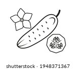simple linear drawing vector... | Shutterstock .eps vector #1948371367