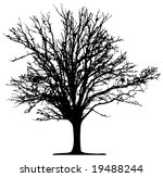 vector tree | Shutterstock .eps vector #19488244