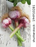 fresh head of garlic on a white ... | Shutterstock . vector #194910281