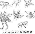 hand drawn scarlet beetle... | Shutterstock .eps vector #1949245957