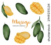 green mango and yellow ripe...   Shutterstock .eps vector #1949255134