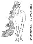 Linear Drawing Of A Horse For...