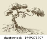 olive tree hand drawn vector... | Shutterstock .eps vector #1949378707