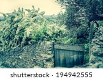 Old Stone Wall Overgrown With...