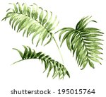 Watercolor Palm Leaves Isolated ...