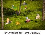 munnar  india   december 8  ... | Shutterstock . vector #195018527