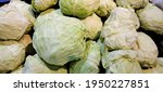 Heaps Of Fresh Cabbage....