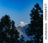 Small photo of A view of the Trisul mountain peak on the Himalayan range framed with pine trees on either sides