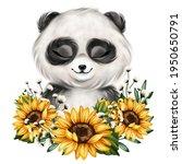Cute Little Panda Portrait....