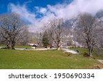 spring landscape in the alps... | Shutterstock . vector #1950690334