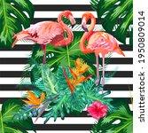 print beautiful tropic pink...   Shutterstock . vector #1950809014
