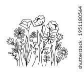 hand drawn wildflowers meadow....   Shutterstock .eps vector #1951180564