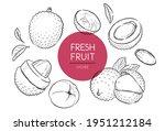 fresh fruits illustrations... | Shutterstock .eps vector #1951212184