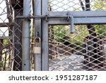 Barbed Wire Door Locked With...