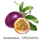 Passion Fruit With Leaves...