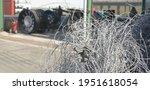 Scrap Iron Wires Outdoor In...