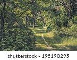 Quiet Walking Footpath Among...