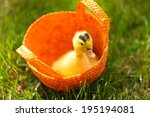 Little Cute Duckling In Basket...