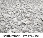 texture of fresh snowy cloth... | Shutterstock . vector #1951962151