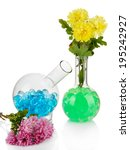 beautiful flowers in vase with... | Shutterstock . vector #195242927