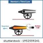 newton's third law vector... | Shutterstock .eps vector #1952559241
