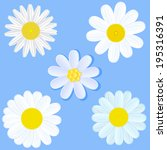 set of white daisies on blue... | Shutterstock . vector #195316391