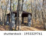 Wooden Gazebo In The Forest...