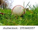 A Dirty Baseball In A Grassy...