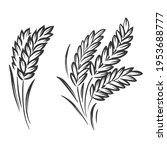 graphic wheat plant on white... | Shutterstock .eps vector #1953688777