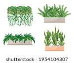 Set Of Houseplants  ...