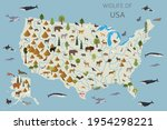 Flat Design Of Usa Wildlife....