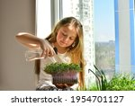 Girl watering the plants on the ...