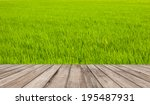 wood texture on green field.... | Shutterstock . vector #195487931