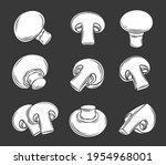 glyph champignon mushrooms... | Shutterstock .eps vector #1954968001