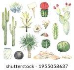 set of cacti  succulents ... | Shutterstock . vector #1955058637
